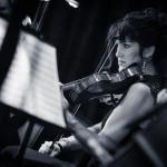 Violin in Concert